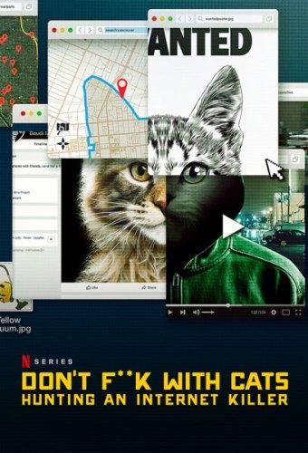 """Snuff su internet: """"Giù le mani dai gatti"""""""